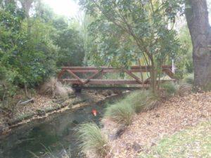 Avon-River.jpg