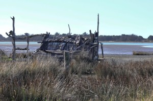 There is a proper bird hide building, in addition to this rustic one. Photo credit: Jeremy Taylor