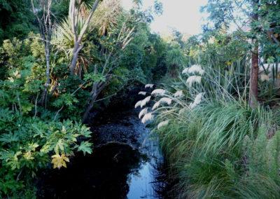Avonhead_Gardens_9