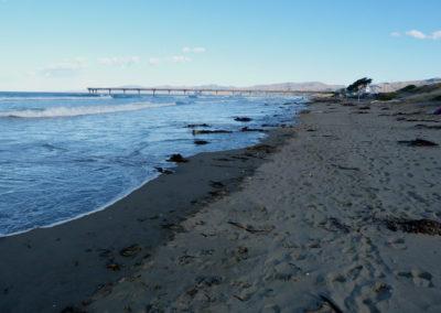 Dunes_Wetlands_18