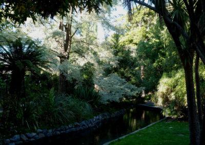 Avonhead_Gardens_4